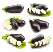 Eggplant images — Photo