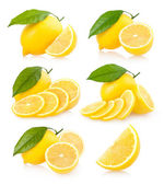 6 lemon images — Stock fotografie