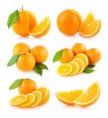 Set of 6 orange images — Stock Photo