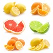 Collection of different citruses — Stock Photo #55701979