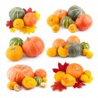 Collection of colorful pumpkin images — Stock Photo #55702565