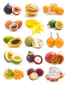 Exotic fruit collection — Photo