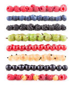 Collection of berry images — Stock Photo
