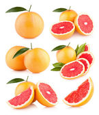 Collection of 6 grapefruit images — Stockfoto