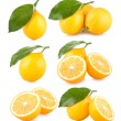 Set pf 6 lemon images — Stock Photo #56833995