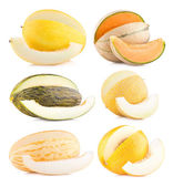 Collection of 6 different melon — Foto Stock