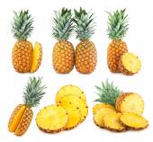 Set of 6 pineapple images — Foto de Stock