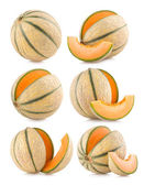 Set of 6 cantaloupe melon — Stock Photo