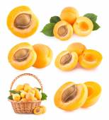 Set of 6 apricots images — Stock Photo