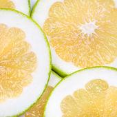 Orange grapefruit slices — Stock Photo