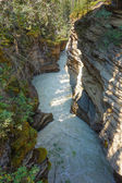 Athabasca Falls in Alberta — Stock Photo