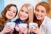 Beautiful women in the cafe — Stok fotoğraf