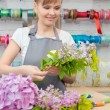 Florist work with flowers — Foto Stock #68190811