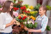 Woman choosing  bouquet — Stock Photo
