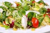 Salad with mozzarella and tomatoes — Stock Photo