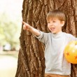 Boy under tree with rubber ball pointing upwards — Stock Photo #73459103