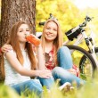 Two girls on a picnic with bikes — Stock Photo #74014765