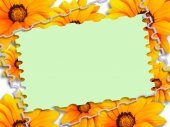Card with flowers — Stock Photo