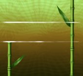 Bamboo floral background — Stock Photo