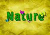 Nature word made of grass — Stock Photo