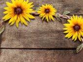 Flowers on wood background — Stock Photo