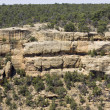 Mesa Verde National Park — Stock Photo #60324479