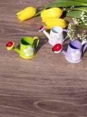 春天背景 — 图库照片