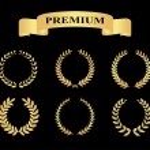 Set of golden silhouette circular laurel foliate — Stock Vector #60443757