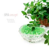 Spa och wellness miljö med gröna havet salt och mynta — Stockfoto