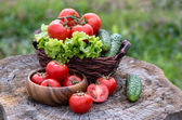 Basket and wooden plate with fresh vegetables — Stock Photo