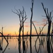 Sunset over lake with dead trees — Stock Photo #62507597