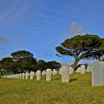 National cemetery with gravestones — Stock Photo #63339965
