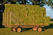 Load of baled hay — Stock Photo