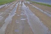 Heavy thunderstorm leaves road wet — Stock Photo