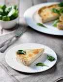 Cheese tart with spinach leaves — Stock Photo
