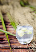 Gin tonic in glass with  ice cubes — Stock Photo