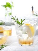 Rosemary fizz cocktail — Stock Photo