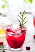 Cranberry, rosemary, gin fizz, cocktail — Stock Photo