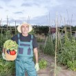 Farmer with harvest — Stock Photo #57124943