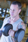 Man making dumbbell alternate curl - workout routine — Stock Photo