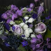 Bouquet von rose — Stockfoto