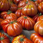 Lufa Farms Beefsteak Tomatoes. — Foto Stock