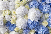 Beautiful and delicate bouquet of white rose and blue buttercups — Stock Photo