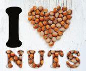 Heart of hazelnut. I love nuts — Stock Photo