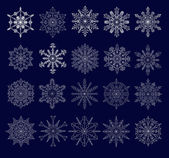 Set of twenty openwork snowflakes — Stock Vector