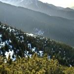 Tatra Mountains near Zakopane. Poland — Stock Photo #76180341