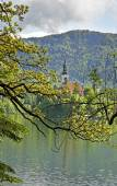Lake Bled. Slovenia — Stock Photo
