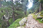 Siblings hiking in Vall de Nuria — Stock Photo