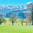 The Swiss Countryside — Stock Photo #72439073