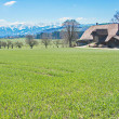 The Swiss Countryside — Stock Photo #72442119
